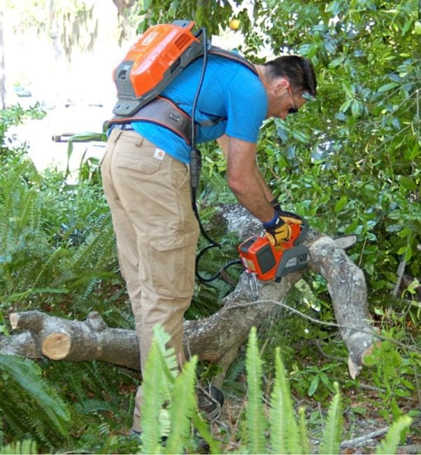 Husqvarna 36V Chainsaw In Use