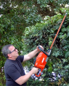 Echo 58V Hedge Trimmer In Use 2