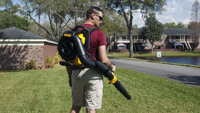 DeWalt 40V Max Backpack Blower Rear View