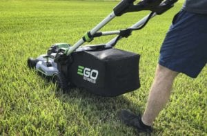 EGO 3rd generation bagging quality
